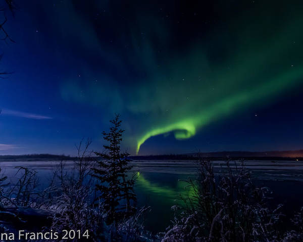 Alaska Poster featuring the photograph Shape Of My Heart by Donna Francis