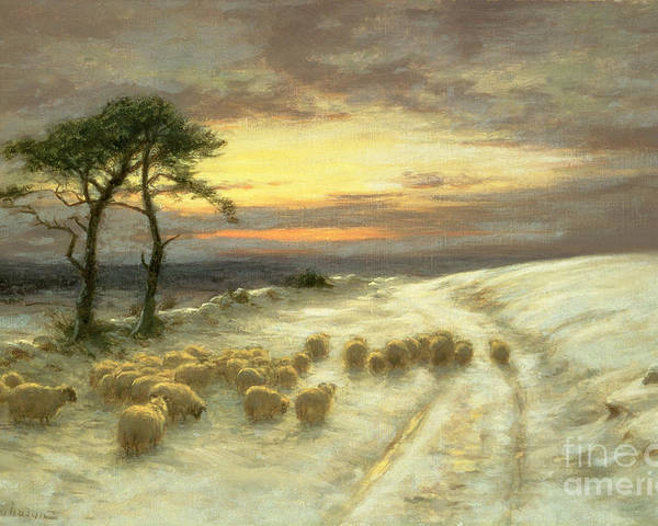 Sheep Poster featuring the painting Sheep In The Snow by Joseph Farquharson