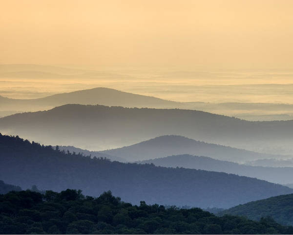 Shenandoah National Park Poster featuring the photograph Shenandoah National Park Mountain Scene by Brendan Reals