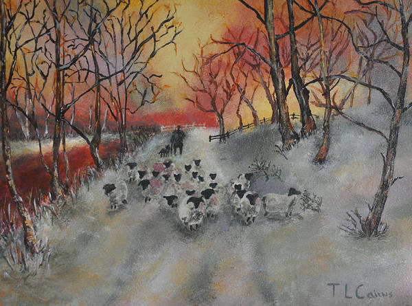 Sheep Poster featuring the painting Shepherd's Delight by Teresa Cairns