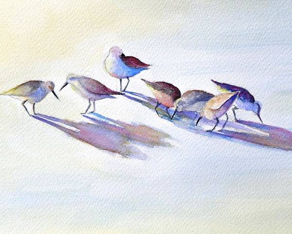 Wildlife Poster featuring the painting Shorebirds by Dorothy Nalls