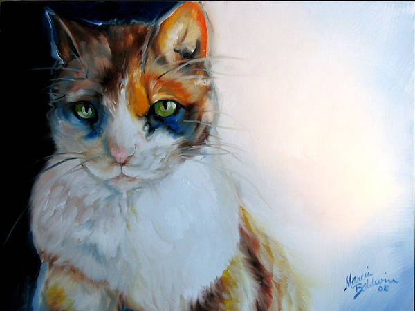 Cat Poster featuring the painting Shy Calli by Marcia Baldwin