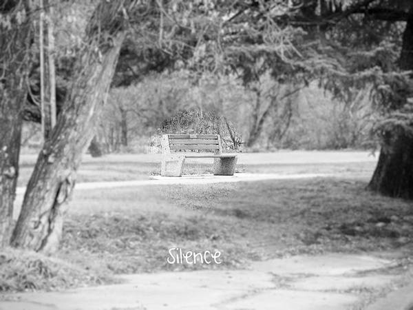 Park Poster featuring the photograph Silence by Creations by Shaunna Lynn