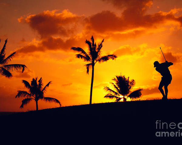 C1266 Poster featuring the photograph Silhouetted Golfer by Dana Edmunds - Printscapes