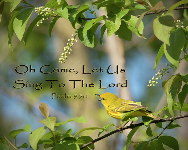 Spiritual Poster featuring the photograph Sing To The Lord by Jayne Gohr