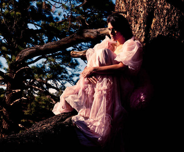 Pink Dress Poster featuring the photograph Sitting In A Tree by Scott Sawyer