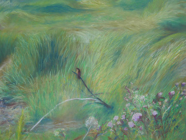 Wetlands Poster featuring the pastel Sitting Pretty by Jackie Bush-Turner