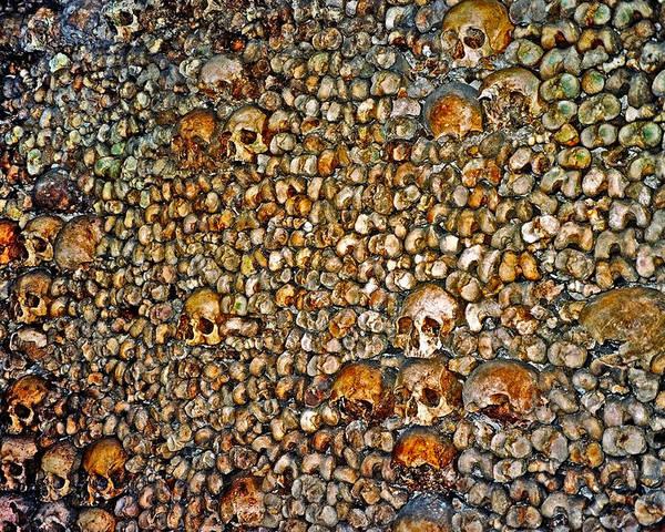 Skulls Poster featuring the photograph Skulls and Bones under Paris by Juergen Weiss