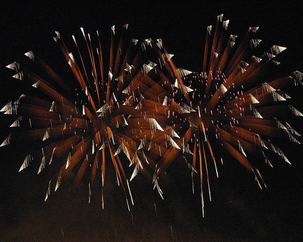 Fireworks Poster featuring the photograph Sky Flowers Lll by Dan Fulk