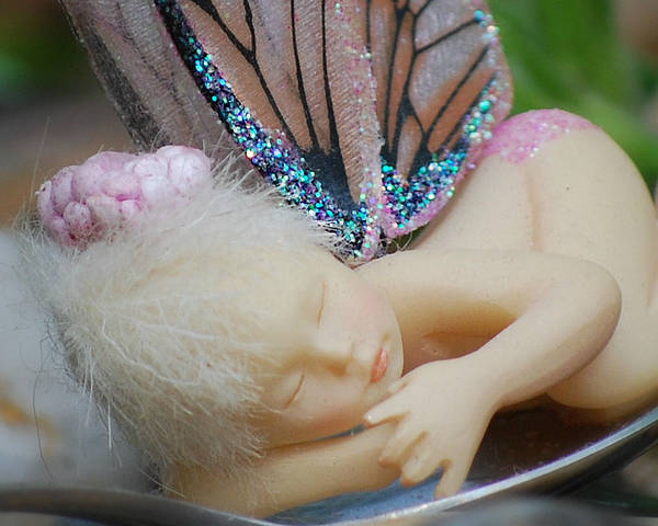 Sleeping Fairy Poster featuring the photograph Sleeping Fairy by Lila Fisher-Wenzel