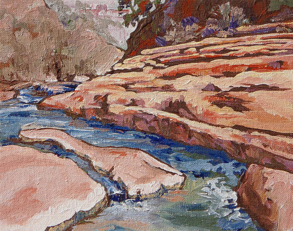 Slide Rock Poster featuring the painting Slide Rock by Sandy Tracey
