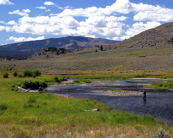 Yellowston National Park Poster featuring the photograph Slough Creek Angler by Marty Koch