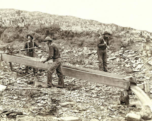 Gold Poster featuring the photograph Sluice Box Placer Gold Mining C. 1889 by Daniel Hagerman