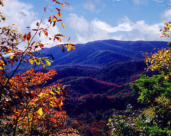 Mountain Poster featuring the photograph Smoky Mountain Autumn View by Nancy Mueller