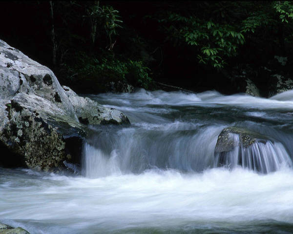 Parks Poster featuring the photograph Smoky Mountain Stream by George Ferrell