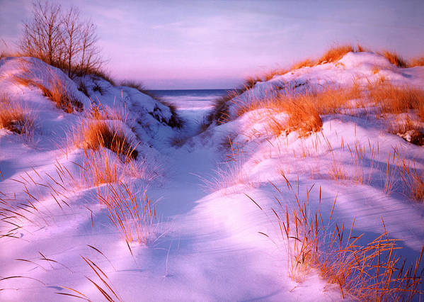 Snow Poster featuring the photograph Snow Dune by Elizabeth Reynders