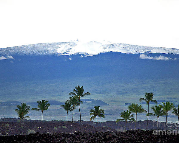 Mauna Kea Poster featuring the photograph Snow On The Mountain by Bette Phelan