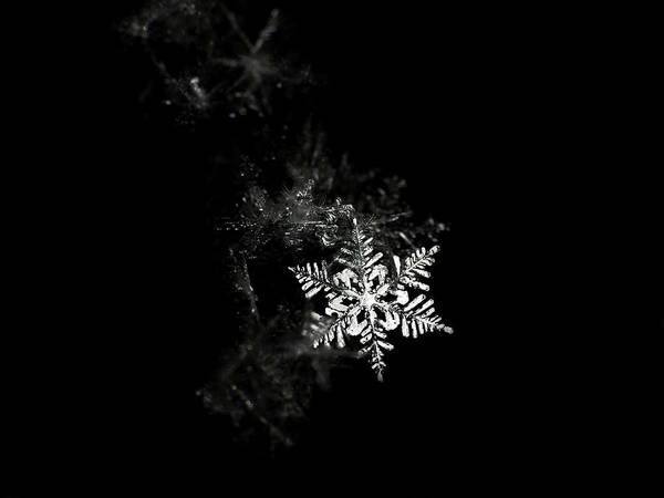 Horizontal Poster featuring the photograph Snowflake by Mark Watson (kalimistuk)