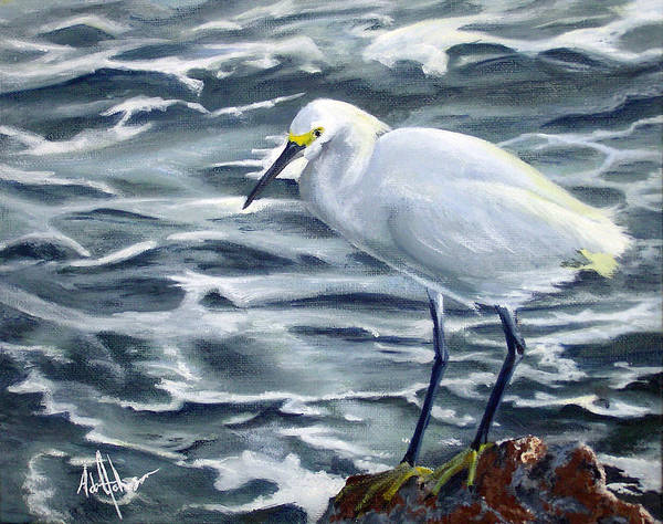 Egret Poster featuring the painting Snowy Egret On Jetty Rock by Adam Johnson