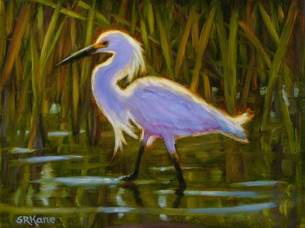 Snowy Egret Poster featuring the painting Snowy Egret by Sonia Kane