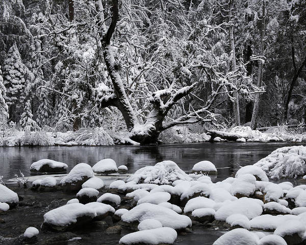 Winter Poster featuring the photograph Snowy River by Dan Peak