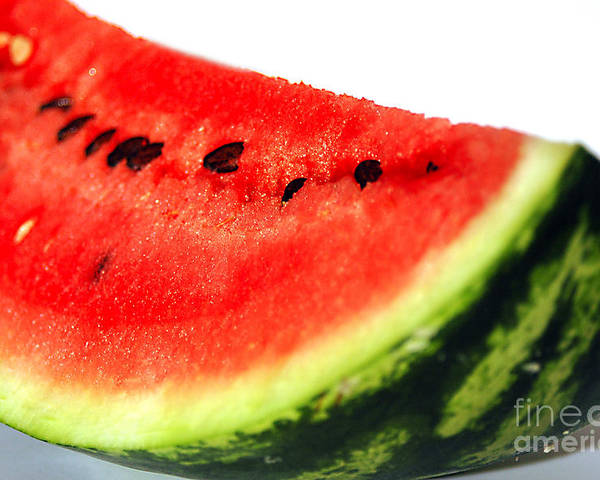 Watermelon Poster featuring the photograph So Sweet by Deborah MacQuarrie-Selib