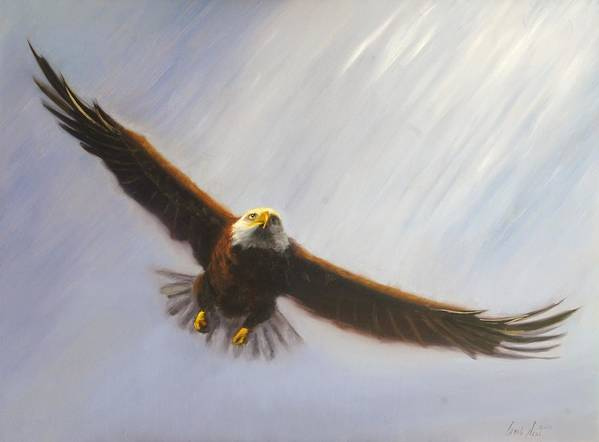 Oil Poster featuring the painting Soaring Eagle by Greg Neal