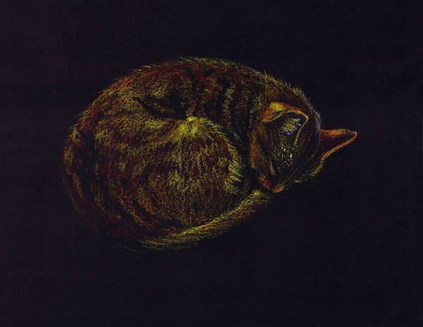 A Cat Soundly Asleep-oil Pastel Poster featuring the painting Sound Asleep II by Mui-Joo Wee