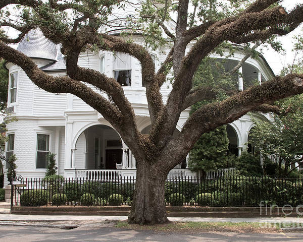 Charleston Poster featuring the photograph Southern Home by Crystal Garner