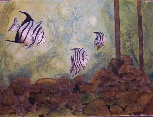 Fish Poster featuring the painting Spadefish In Fl by Audrey Bunchkowski
