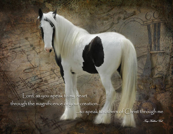 Equine Poster featuring the photograph Speak To My Heart by Terry Kirkland Cook