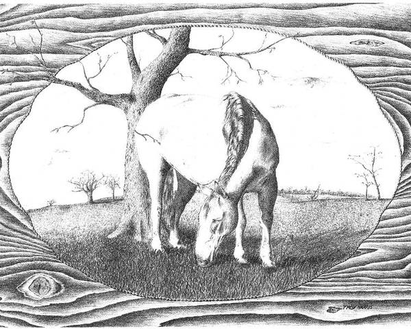 Pencil Poster featuring the drawing Special Ed by Troy Harris