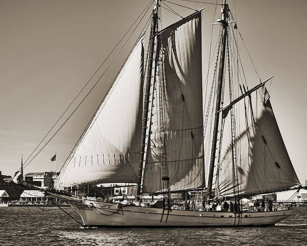 Spirit Of South Carolina Poster featuring the photograph Spirit Of South Carolina Schooner Sailboat Sepia Toned by Dustin K Ryan