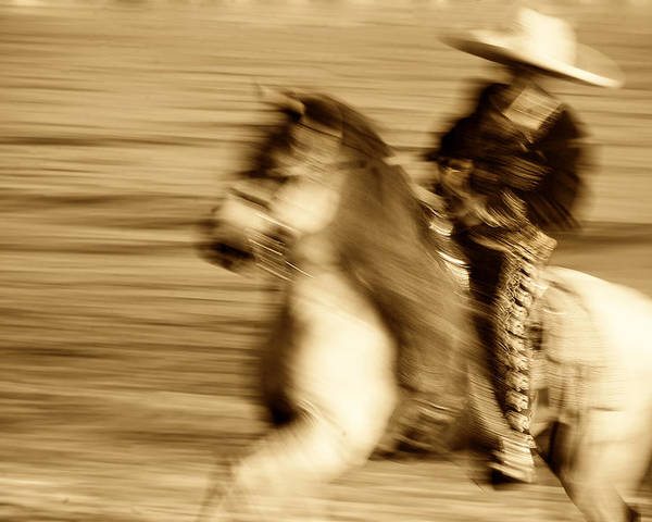 Equine; Horses; Charro Poster featuring the photograph Spirit Of The Charro3 by Nick Sokoloff