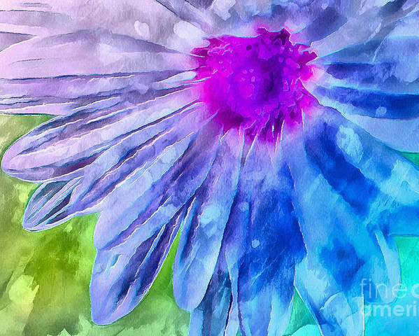 Daisy Poster featuring the photograph Splash Of Spring by Krissy Katsimbras