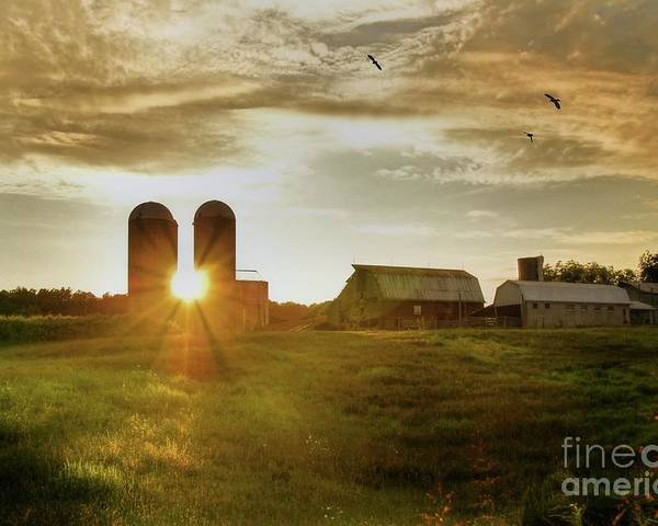 Sunset Poster featuring the photograph Split Silo Sunset by Benanne Stiens