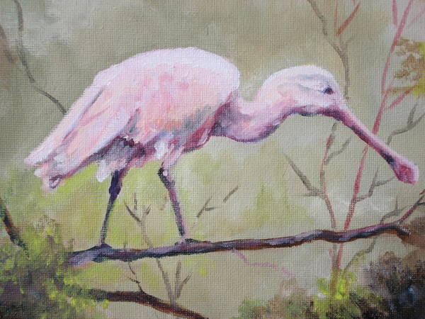 Bird Poster featuring the painting Spoonbill by Carol Mueller