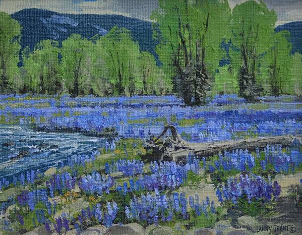 Poster featuring the painting Spread Creek Lupine by Lanny Grant