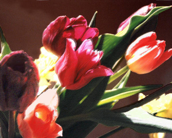 Floral Still Life Poster featuring the photograph Spring Bouquet by Steve Karol