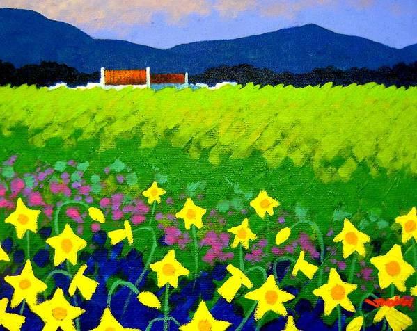 Irish Landscape Poster featuring the painting Spring Daffs Ireland by John Nolan