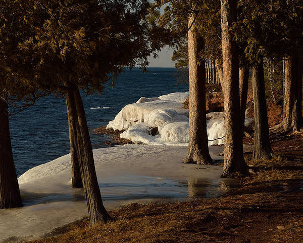 Trees Poster featuring the photograph Spring Ice by Rosebud McGreevy