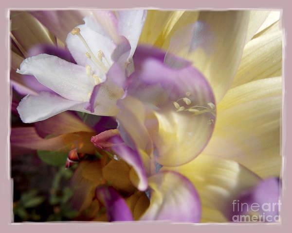 Flower Poster featuring the digital art Spring Overture by Chuck Brittenham
