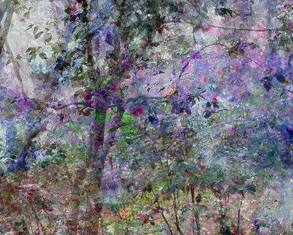 Abstract Poster featuring the photograph Springtime by Don Zawadiwsky
