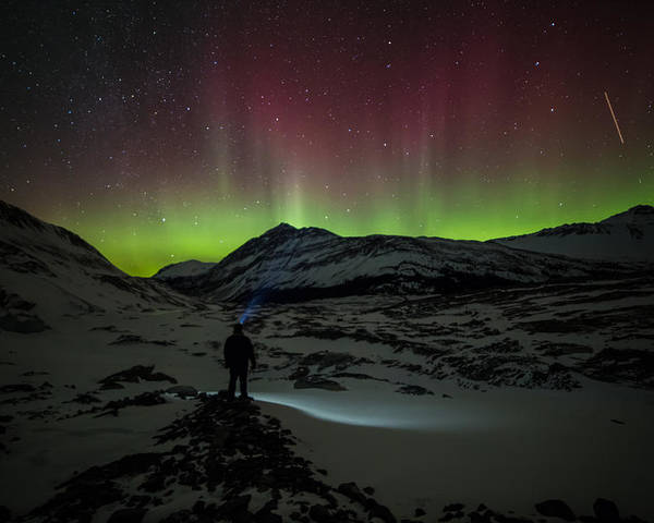Alberta Poster featuring the photograph Standing In Awe Of The Auroras by Craig Brown