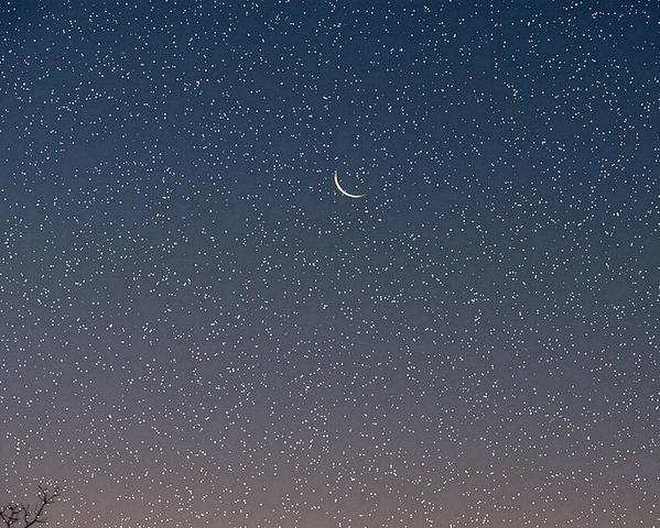Poster featuring the photograph Starry Morning Sky by Luciana Seymour