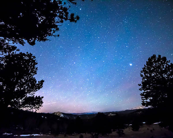 Night Poster featuring the photograph Starry Rocky Mountain Forest Night by James BO Insogna