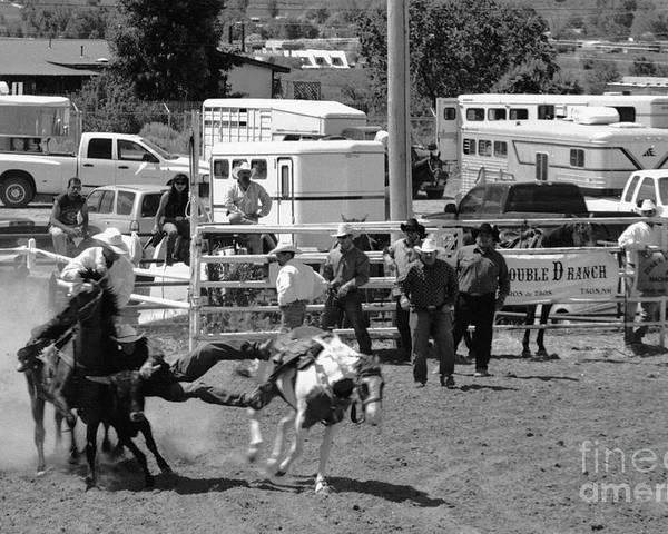 Rodeo Poster featuring the photograph Steer Wrestling by Susan Chandler