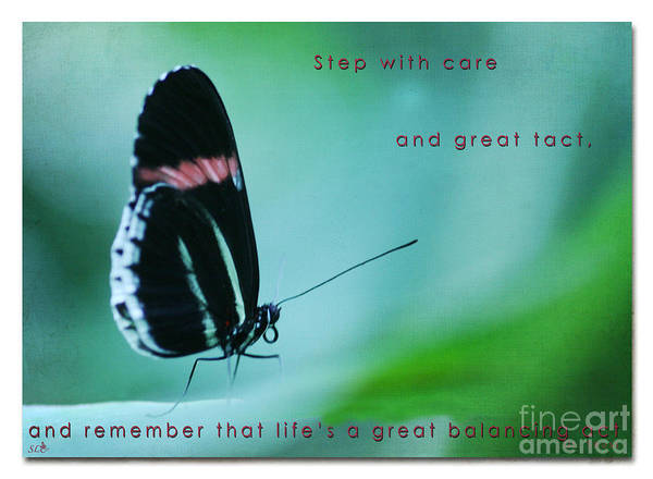 Butterfly Poster featuring the photograph Step With Care by Sandra Clark