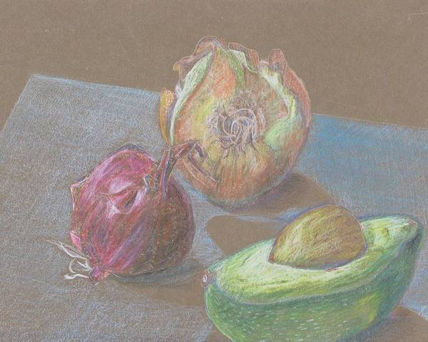 Still Life Poster featuring the drawing Still Life With Avacado by Kathy Mitchell