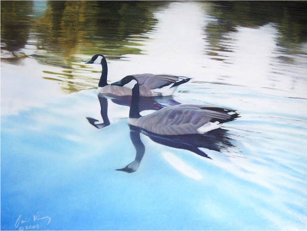Canadian Geese Poster featuring the painting Still Motion by David Vincenzi